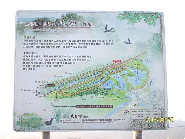 民國105.08.20大漢溪左岸自行車道板橋到樹林段 (28).jpg