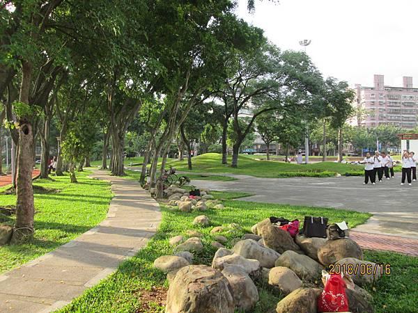 107.06.16早晨散步於板橋溪北公園 (7).jpg