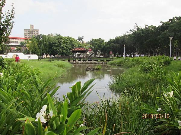 107.06.16早晨散步於板橋溪北公園 (12).jpg