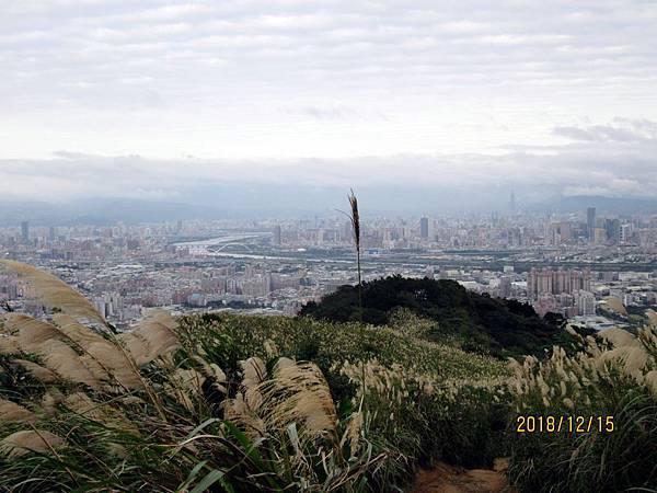 民國107.12.15樹林三角埔頂山賞芒花 (1).jpg