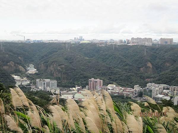 民國107.12.15樹林三角埔頂山賞芒花 (2).jpg