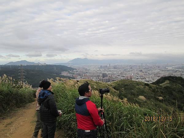 民國107.12.15樹林三角埔頂山賞芒花 (5).jpg