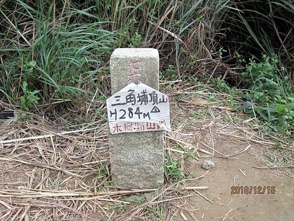 民國107.12.15樹林三角埔頂山賞芒花 (6).jpg