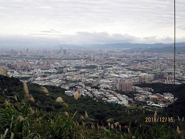 民國107.12.15樹林三角埔頂山賞芒花 (10).jpg