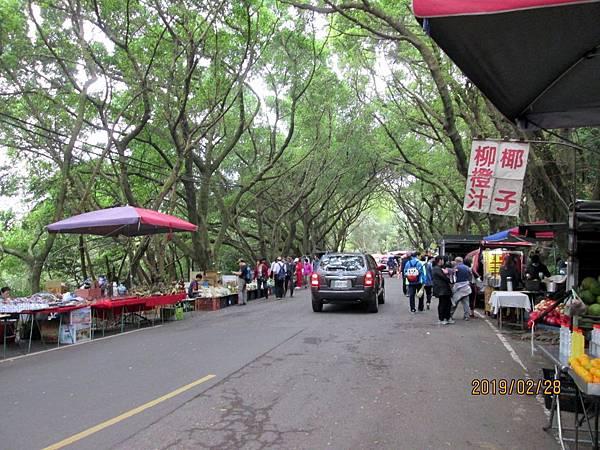 108.02.28桃園虎頭山環保公園走步道至明倫三聖宮 (56).jpg