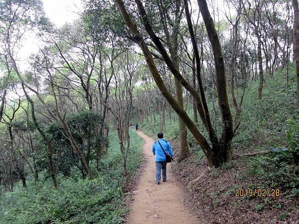108.02.28桃園虎頭山環保公園走步道至明倫三聖宮 (76).jpg