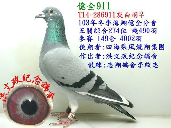 2014-286911-綜合274.jpg