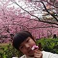 P_20180127_141334_HDR.jpg