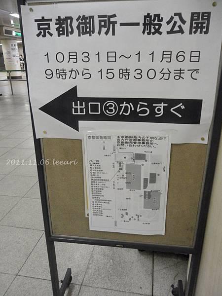 201111貝 (39)