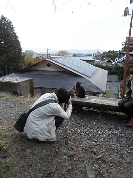201111貝 (48)