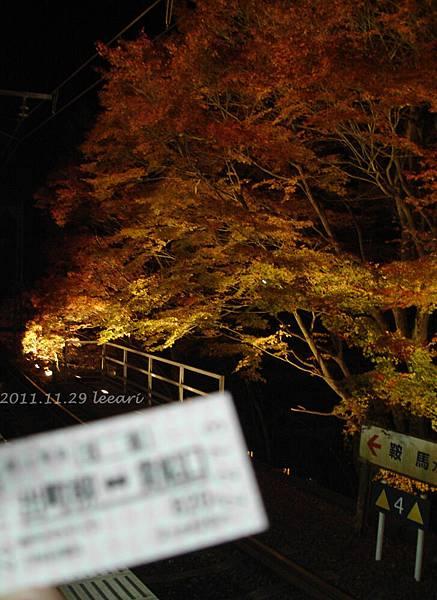 201111貝 (1)