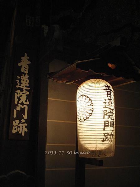 201111貝 (17)