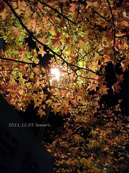 201112 (4)