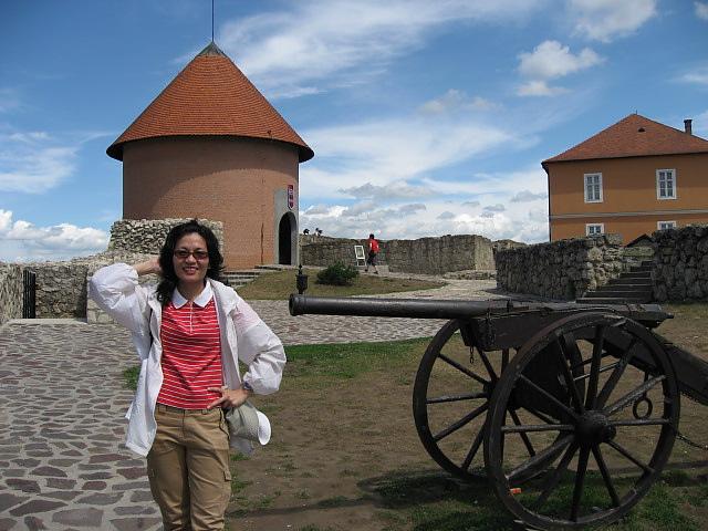 城堡上的砲台