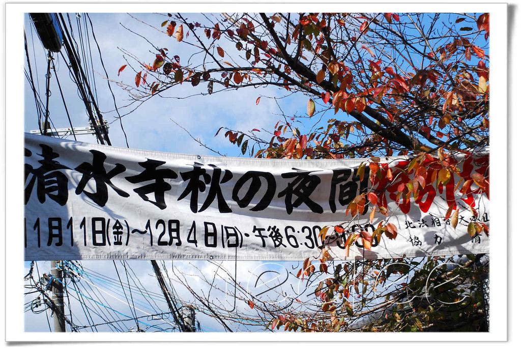 20111124 清水寺 12.jpg