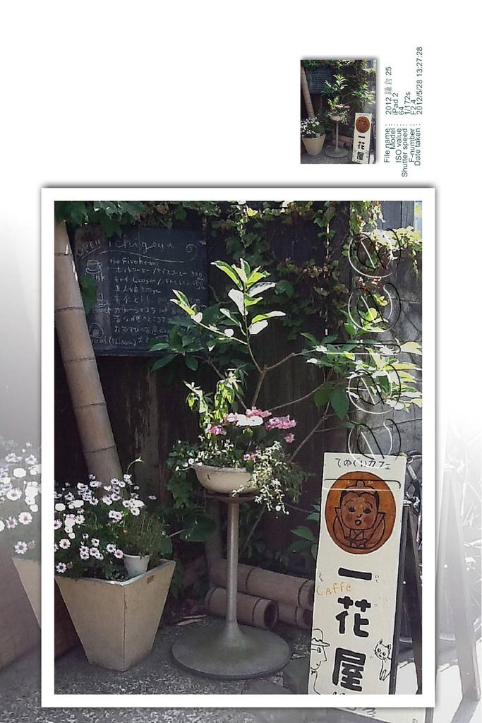 2012-06-19 鎌倉 17