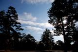 2009-02-15 2009 日本天寒地凍踏雪行 - 金澤篇 0000.JPG