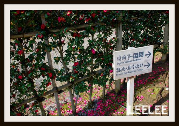 2009-02-15  2009 日本天寒地凍踏雪行 - 金澤篇 003.jpg