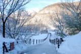 2009-02-17 2009 日本天寒地凍踏雪行:白川鄉‧點燈03.JPG