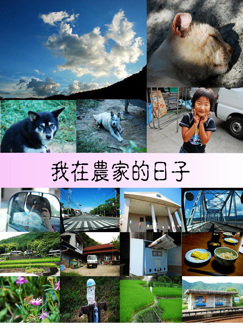 2008-08-29 2008 仲夏WWOOF+漫遊四國:我在農家的日子(相片篇).JPG