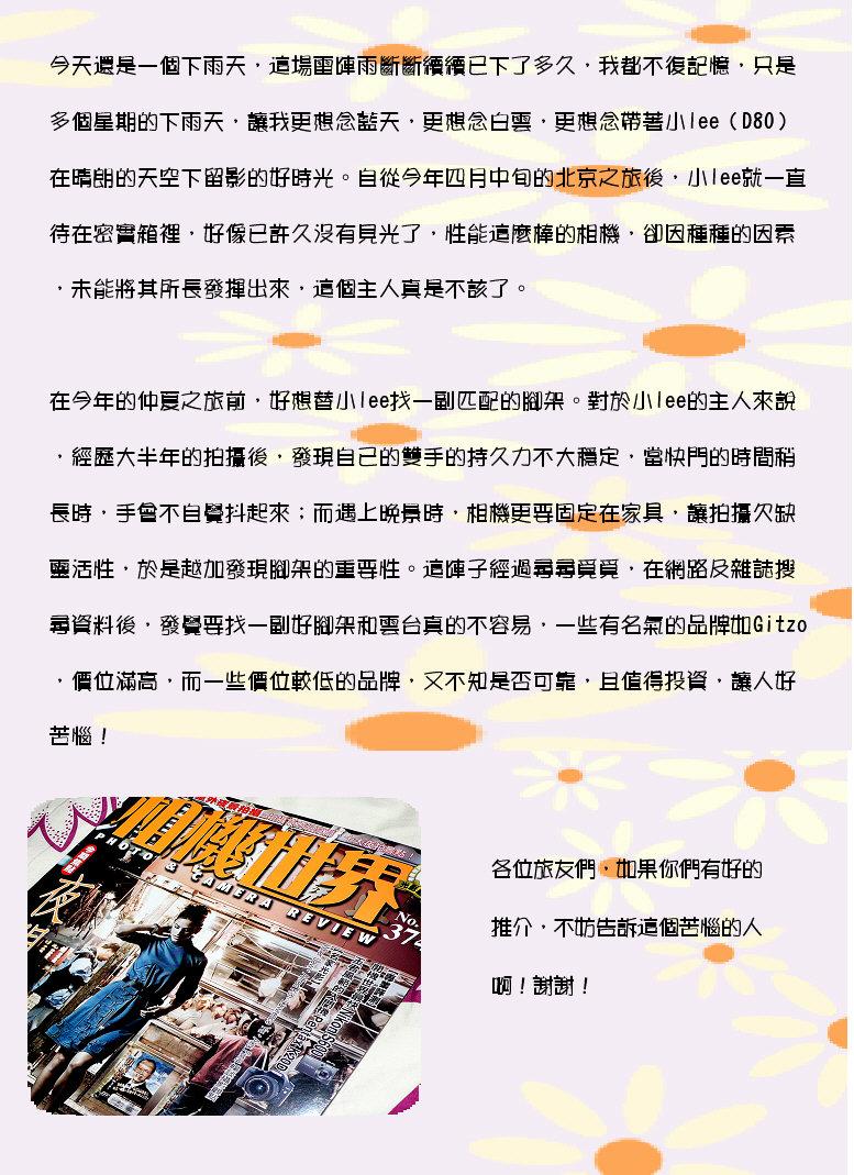2008-06-17為小lee尋覓好拍檔.JPG