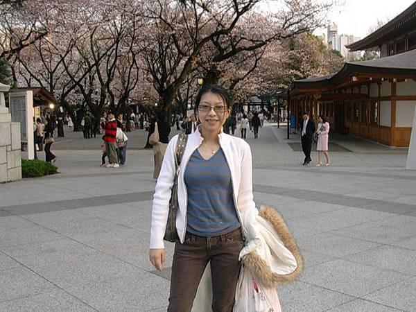 靖國神社的櫻花