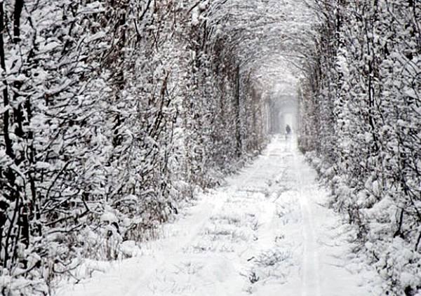 愛的隧道1.jpg