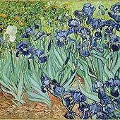 van_Gogh_鳶尾花.jpg