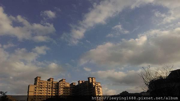 IMAG0225.jpg