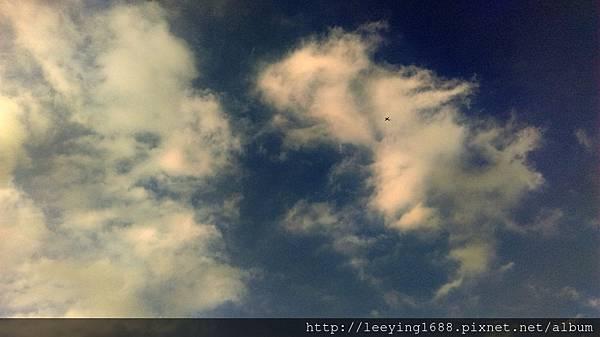 IMAG0298.jpg