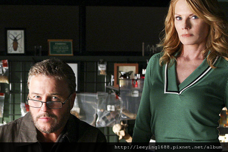 william-petersen-marg-helgenberger-csi