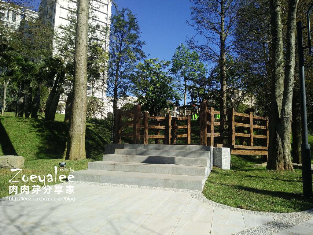 花園 (3).jpg