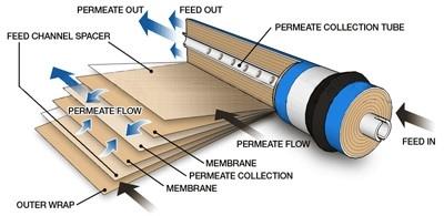 Spiral Membrane.jpg