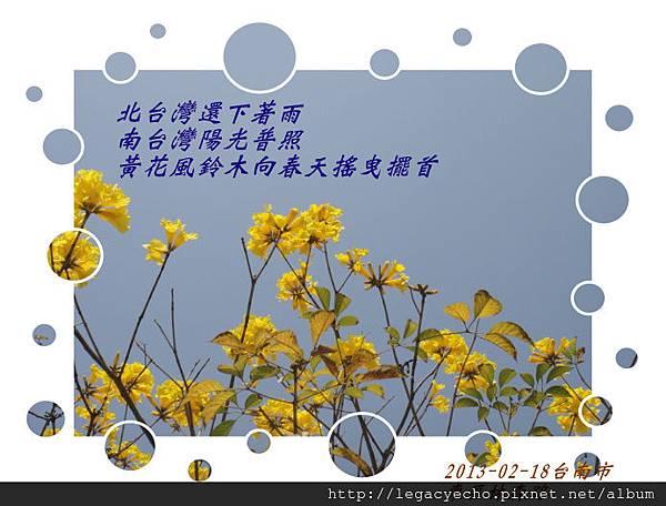 DSC09839 (2)