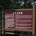 大江大教堂04.jpg