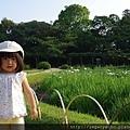 10花蒼蒲田八橋05.jpg