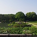 唯心山06看澤之池三島.jpg