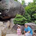 A苔癬岩.jpg