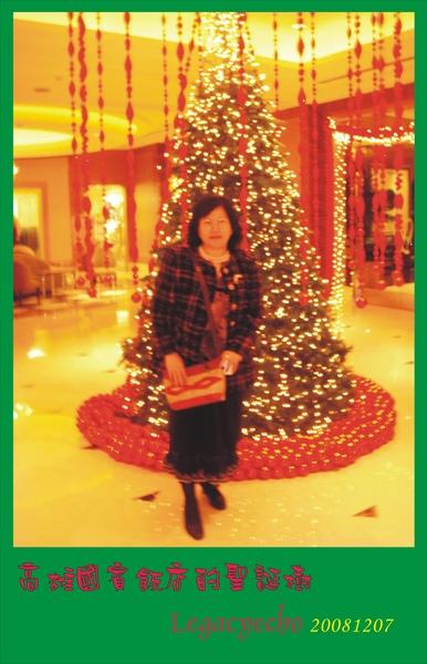 聖誕樹DSC03586.jpg