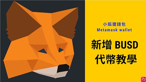 Metamask|小狐狸錢包新增 BUSD 教學 (How to add BUSD in Metamask)