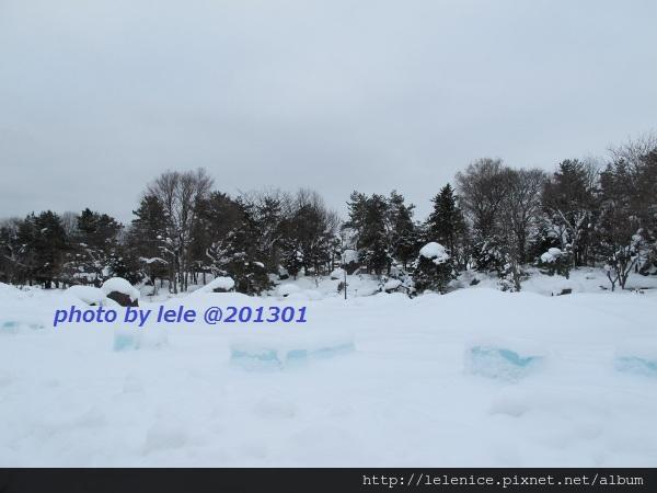 IMG_6636 (600x450)