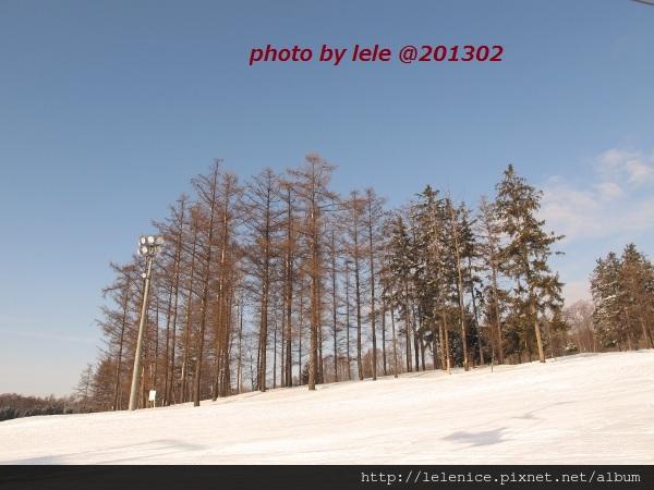 IMG_8801 (600x450)
