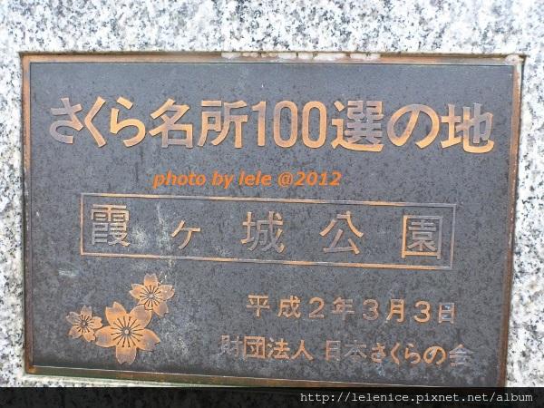 P1060071 (600x450)