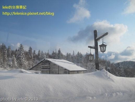 IMG_0911 (600x450)
