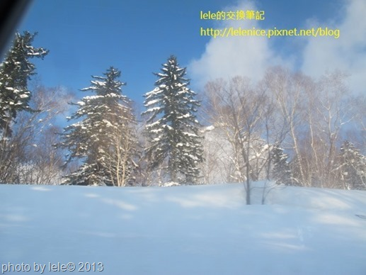 IMG_0919 (600x450)