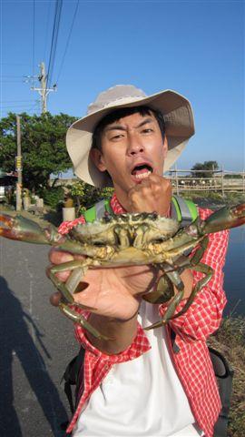 魚虎已經夠兇猛..聽說台南有一種〝蟳虎〞更可怕...牠竟然吃螃蟹!!