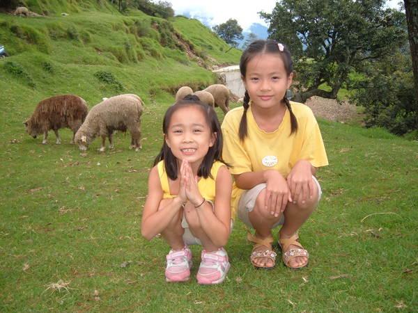 清境農場-妹與小表妹