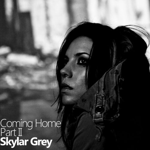 Skylar Grey – Coming Home(返家) Pt II 中文歌詞  & Goodbye Monty Oum  We Love U:') #檸檬熊