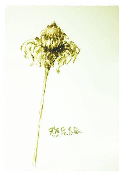 花as.jpg