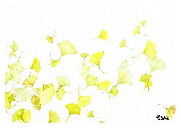 銀杏1s.jpg